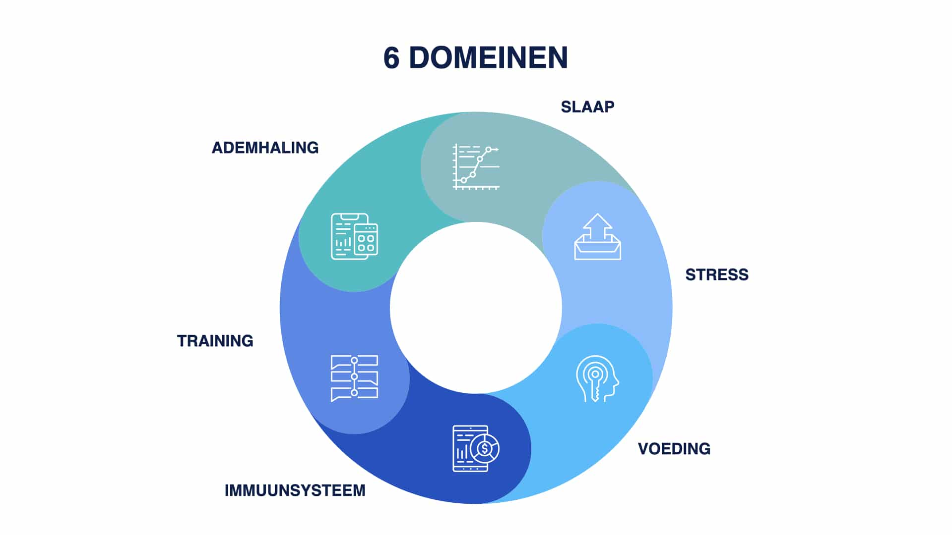 personal training, afvallen, personal trainer, Nijmegen, Wouter Van aalst, 6 domeinen model, physis academy